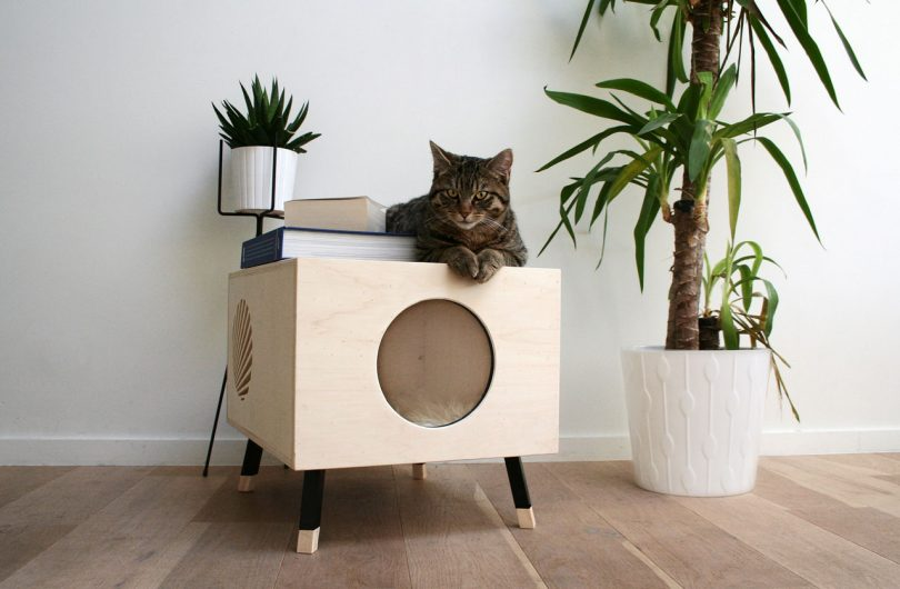 A Modern Cat House They'll Love and You Won't Mind Having Around