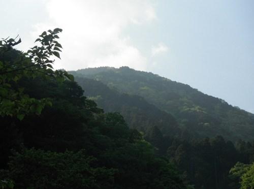 丹沢「鍋割山」(寄大橋より後沢乗越経由鍋割峠周回)