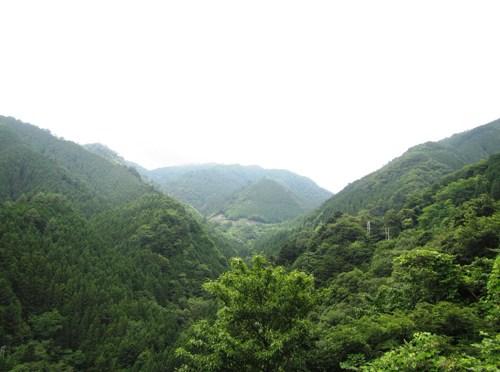 日本三百名山「三頭山」(檜原都民の森周回)