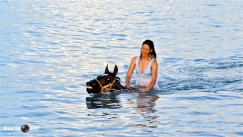 Swimming with Horses 16