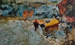 1000butterflies.ca - jeannie wai -2