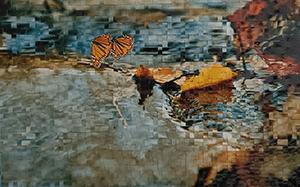 1000butterflies - photo by Jeannie Wai