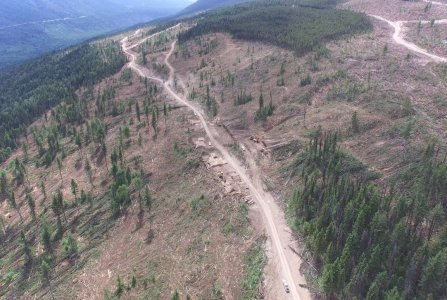 Recent clearcuts near Wells Gray Park.