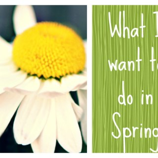 MY SPRING WANT-DO LIST 2014