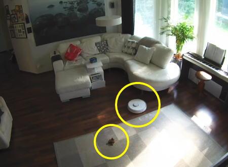 ペットを飼っているご家庭でルンバを使用するとき最も気を付けるべき点がこちら。