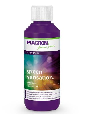 Green-Sensation-Plagron-100