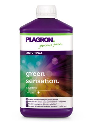 Green-Sensation-Plagron
