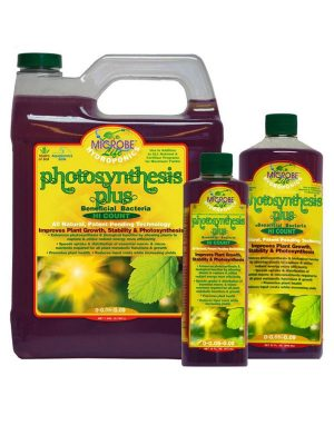 Microbe-Life,-Photosynthesis kaufen, Growshop 1000Seeds