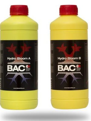 Hidro Bloom von BAC