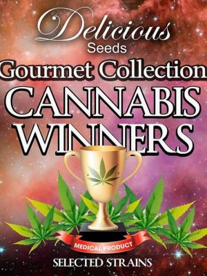 Gourmet Collection Cannabis Winners