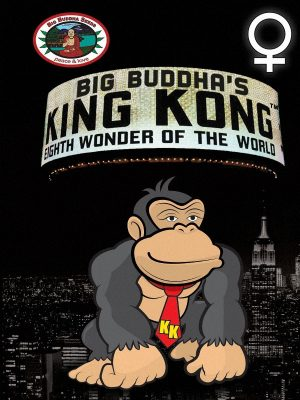 King-Kong-Big-Buddha