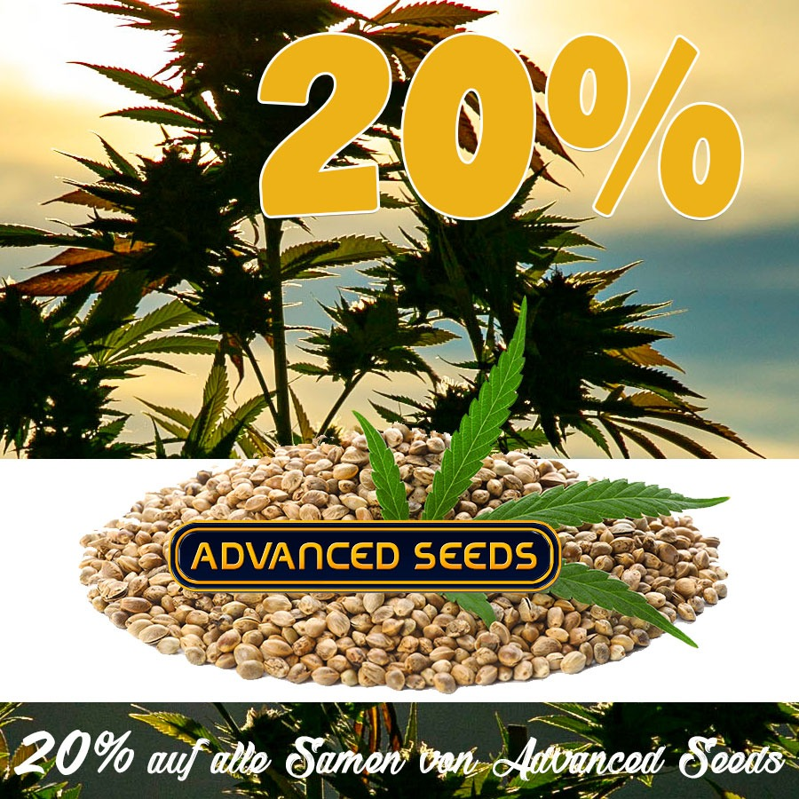 20% auf alle Cannabissamen von Advanced Seeds