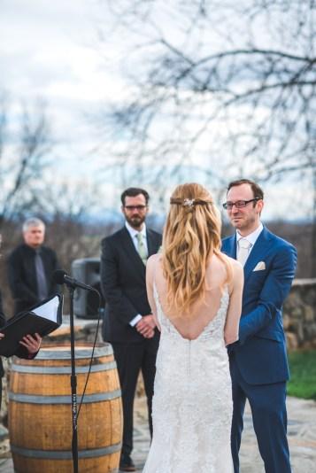 Bluemont Vineyard Wedding Virginia-51