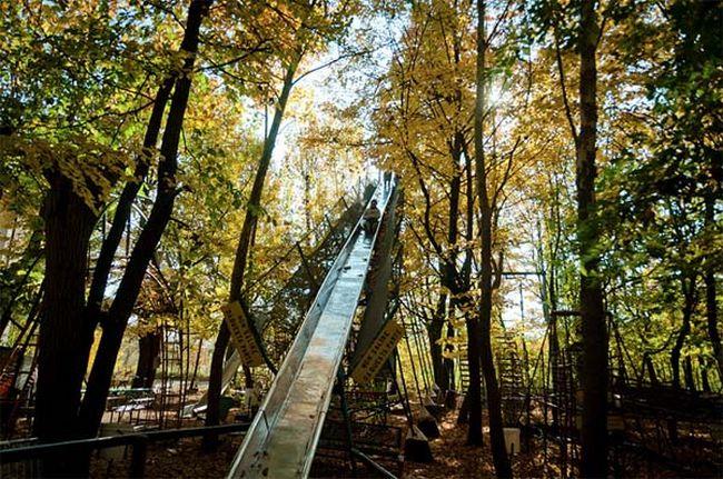 construção na floresta (10)