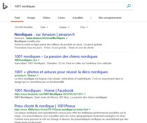 Recherche avec Bing