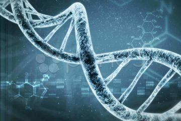 ADN graph
