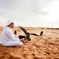 Auf Entdeckungstour durch Dubais Wüste