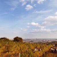 Wiens unbekannte Orte: Plätze und Stätten, die Geschichten erzählen