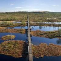 Sieben Dinge, die Mittsommer in Estland zum Highlight machen