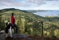 Finnland-Funland feiert 100 Jahre Unabhängigkeit – natürlich mit verrückten Events