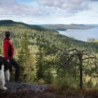 Land der tausend Inseln – Zwischen Natur und Kultur neue Seiten an Finnland entdecken