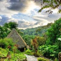 Costa Rica: Domizile mit grünem Herzen und Ausblick