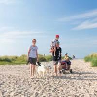 Nordseeurlaub auf vier Pfoten