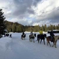 Winterurlaub ohne Skier in Tirol? Das geht!