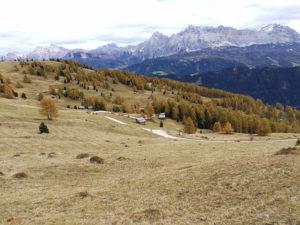 Südtirol ©Detlef Düring