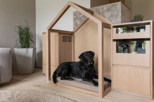 Wasnerin WOW-Suite mit Hund ©Luttenberger