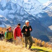 Vom Urwald zum Ewigen Eis und von der Alm in den Bergbach