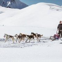 Zehn Alternativen zu Ski alpin