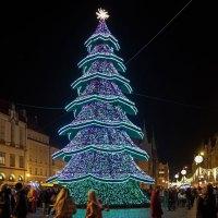 In Polen werden traditionelle Weihnachtsbräuche noch gepflegt