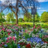 Super-Gartenjahr am Bodensee