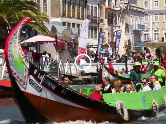 Passear de moliceiro na ria de Aveiro!