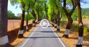 A estrada mais bonita do Alentejo?
