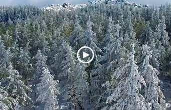A beleza da neve na Serra da Estrela!
