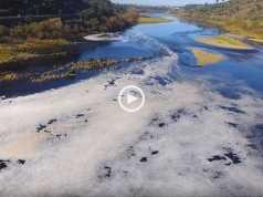 Indignação! Andam a matar o Rio Tejo!