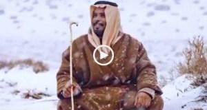 Camelos cobertos de neve: o nevão na Arábia Saudita