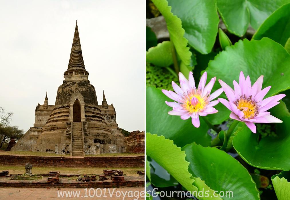 Ayutthaya - jednodenní výlet z Bangkoku. Bývalé sídlo Siamského království najdete severně od Bangkoku a patří k hojně navštěvovaným místům v Thajsku.
