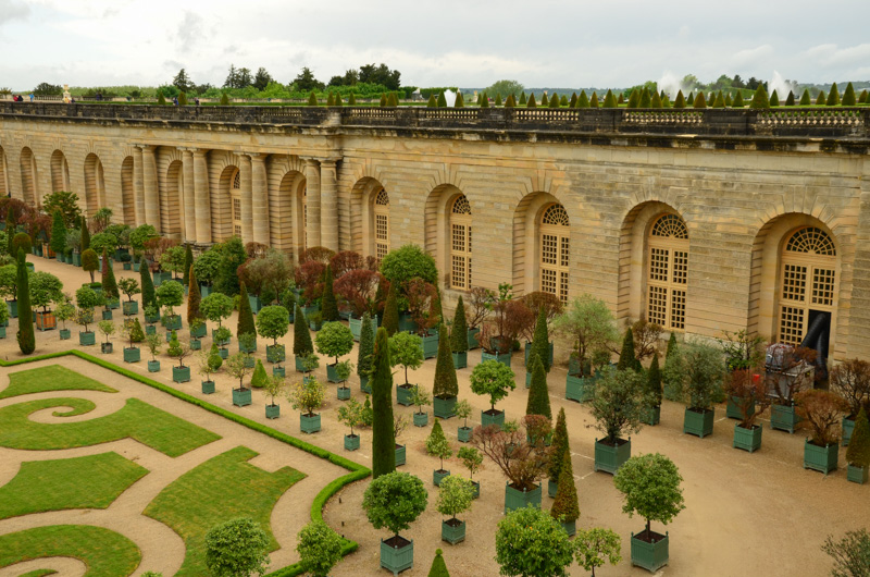 Versailleské zahrady byly navrženy slavným zahradním architektem André Le Nôtre, který tak přetvořil močálové území na systém kanálů, jezírek a fontán.