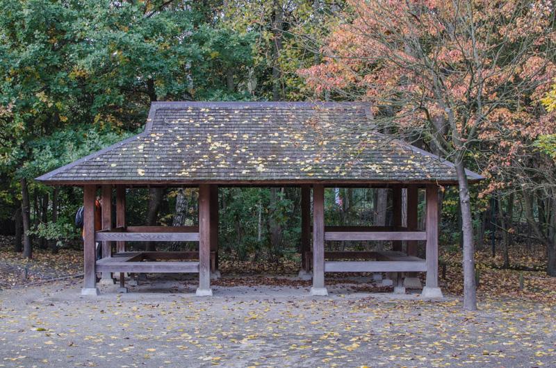 Což takhle na chvilkou zapomenout, že jsme ve staré známé Belgii a probudit v sobě podzmní radost uprostřed Japonské zahrady za krásného podzimního dne?