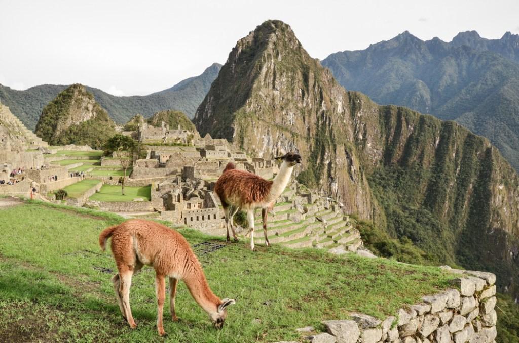 Po naší zkušenosti s návštěvou inckého kultovního města jsem se rozhodla sepsat vše důležité, co musíte vědět o Machu Picchu, než sem podniknete výlet.