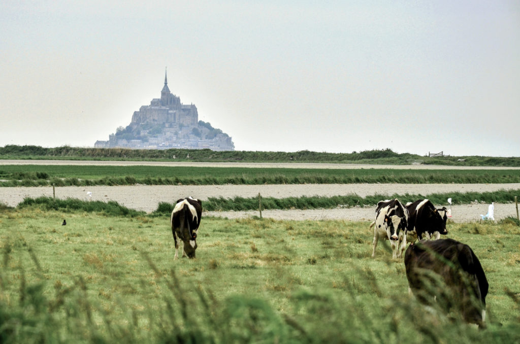 Some time ago during a long weekend in May, I had a chance to visit a lovely corner of France - Normandy. In 4 days we visited Deauville, Mont Saint Michel, the D-Day Landing beaches, Caen, and Honfleur and in this post I share some impressions from this trip with you.