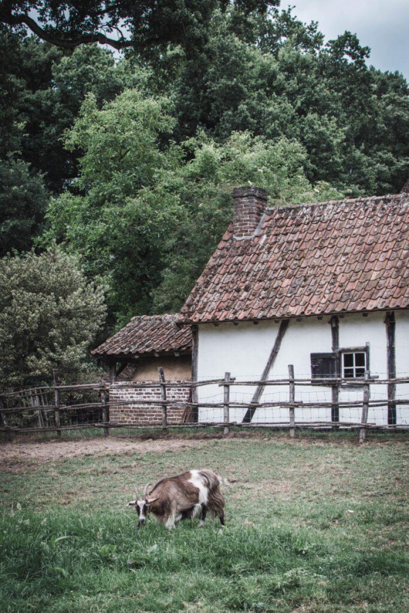 Dnes vám s radostí přináším tip na výlet do skanzenu v belgickém Bokrijku, kousíček od Genku v provincii Limburg, a také nedaleko od nás.