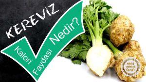 kereviz-nedir-kerevizin-faydalari-kereviz-kac-kalori-kereviz-yemekleri-kereviz-tarifleri-nefis-1001yemektarifi