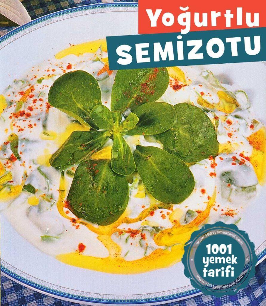 kolay-meze-tarifi-yogurtlu-semizotu-yapimi-kac-kalori-nasil yapilir-nefis-pratik mezeler-tarifler-1001yemektarifi