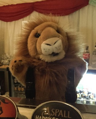 A photograph of The Cambridge Roar mascot, Roary. the lion