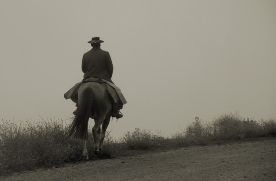 The first sighting of a gaucho