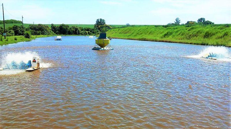 Homeopatia-aquicultura-gera-maior-sustentabilidade-região-Oeste-Paraná